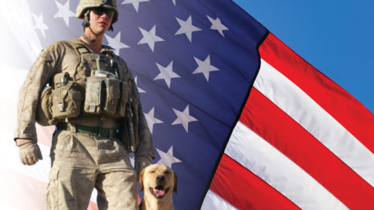 flag-soldier-dog