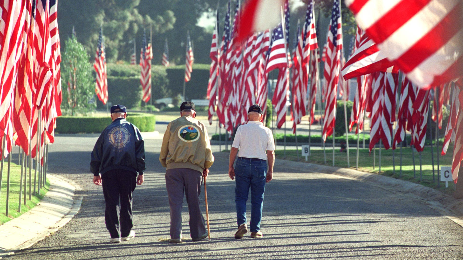 Veterans with flags